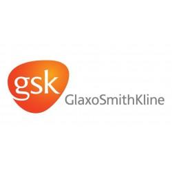 GlaxoSmithKline Bio
